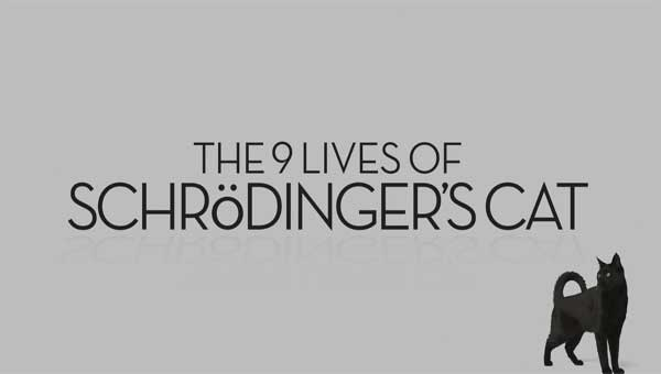 Nine Lives of Schrodingers Cat